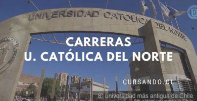 universidad catolica del norte carreras
