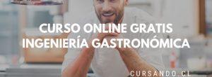curso online ingenieria gastronomica